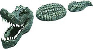 p-13180-alligator_2.jpg
