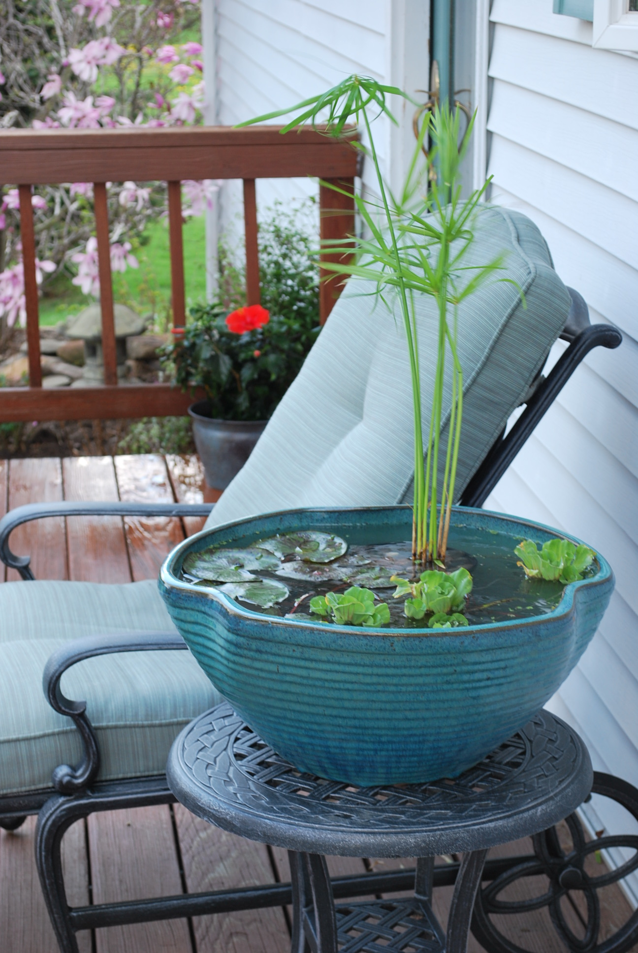 Donu0027t Have The Space For A Pondu2026.ever Consider A Container Water Garden?  There Are Many Ways To Create A Small Water Feature To Enjoy And Several  Water ...