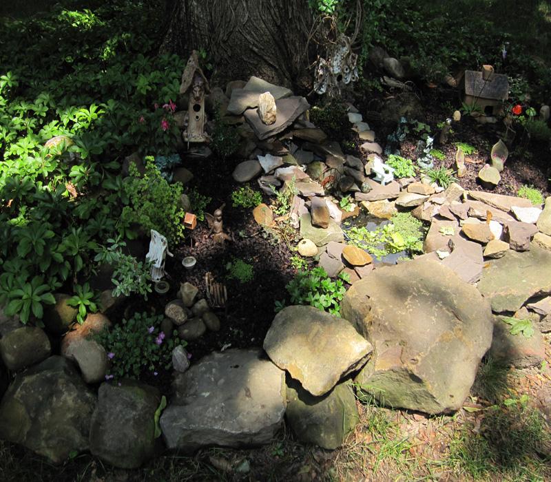 Secret Magical Miniature Gardens Dragonfly Aquatics